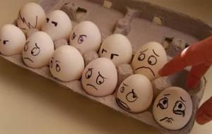 Egg facebook 2